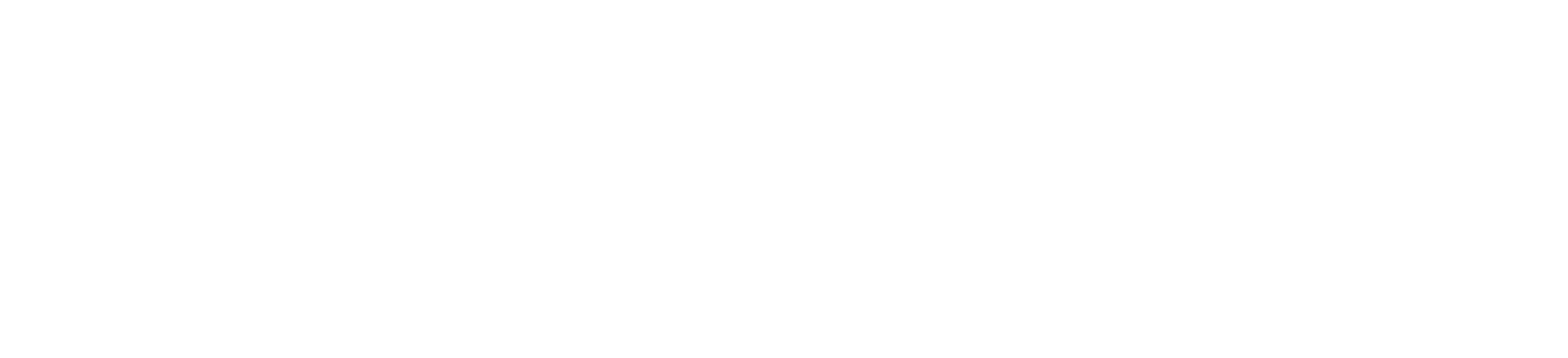 LOGO-WHITE-@8x